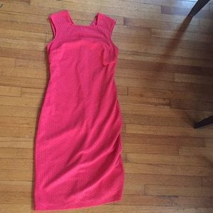 Woman's Fitted Sleeveless Dress